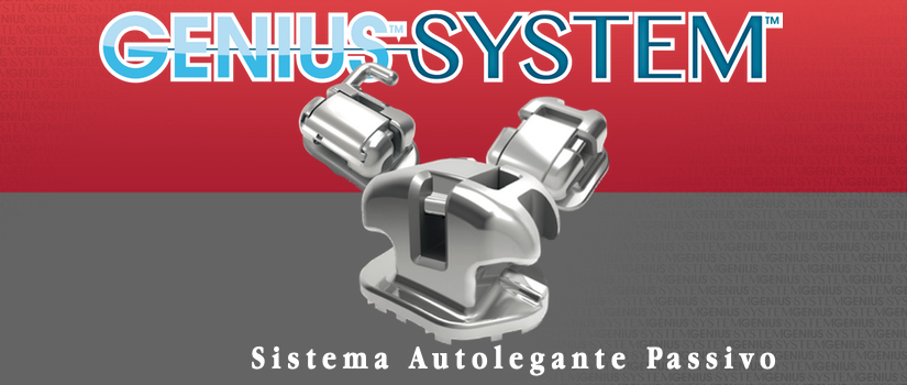 Genius System sistema autolegante